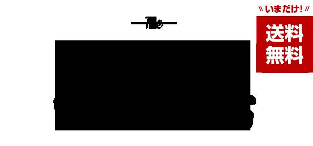 エラスティック シューレース ELASTIC SHOELACES
